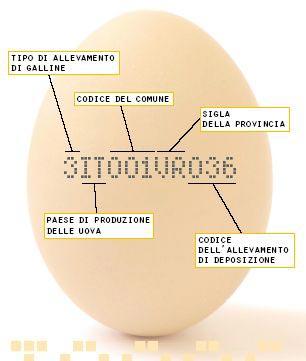 lettura etichetta uova